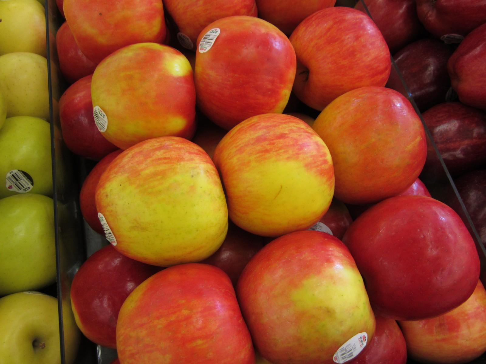 apples 004