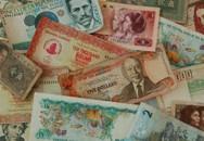 stock dollars international