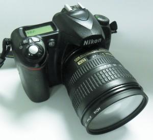 YPI hosts photo contest