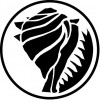 TRITON-shell---black-web