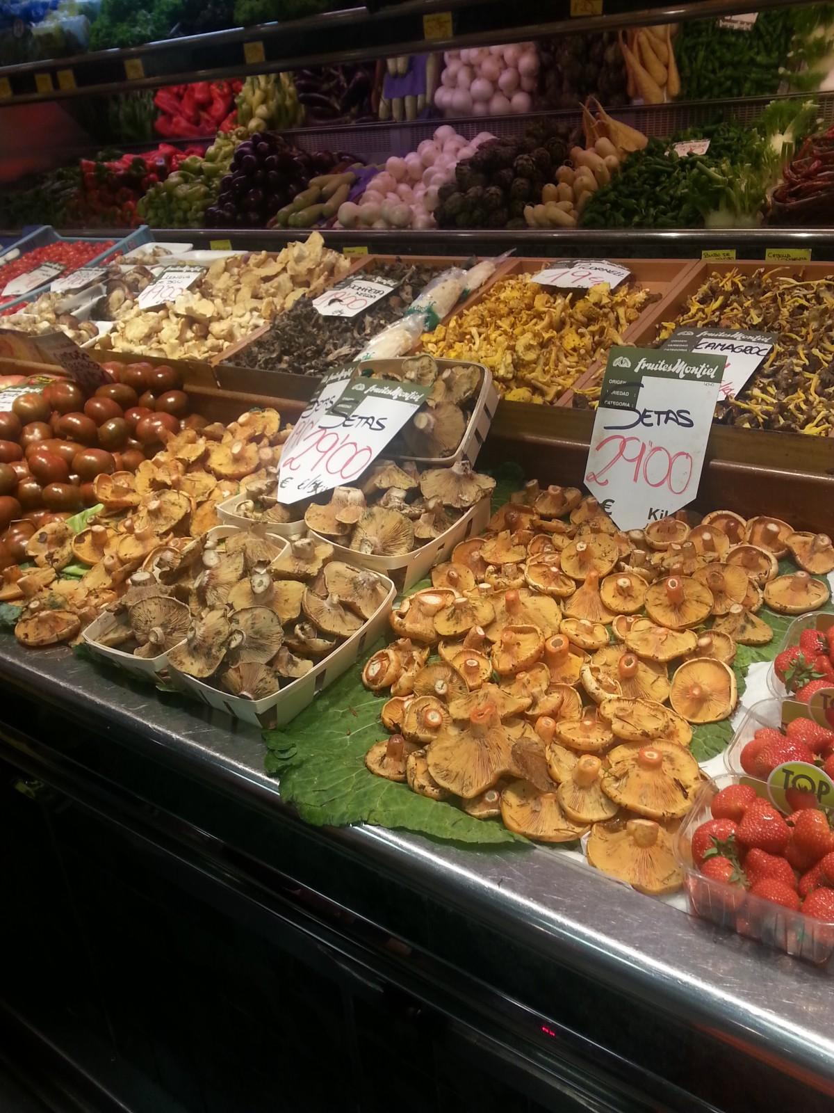 mushrooms in Palma