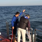 Crew throws nets over the side to collect plankton samples. (PROVIDED PHOTOS)
