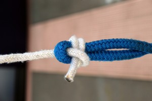 Triton Today Survey:  What's your favorite knot?