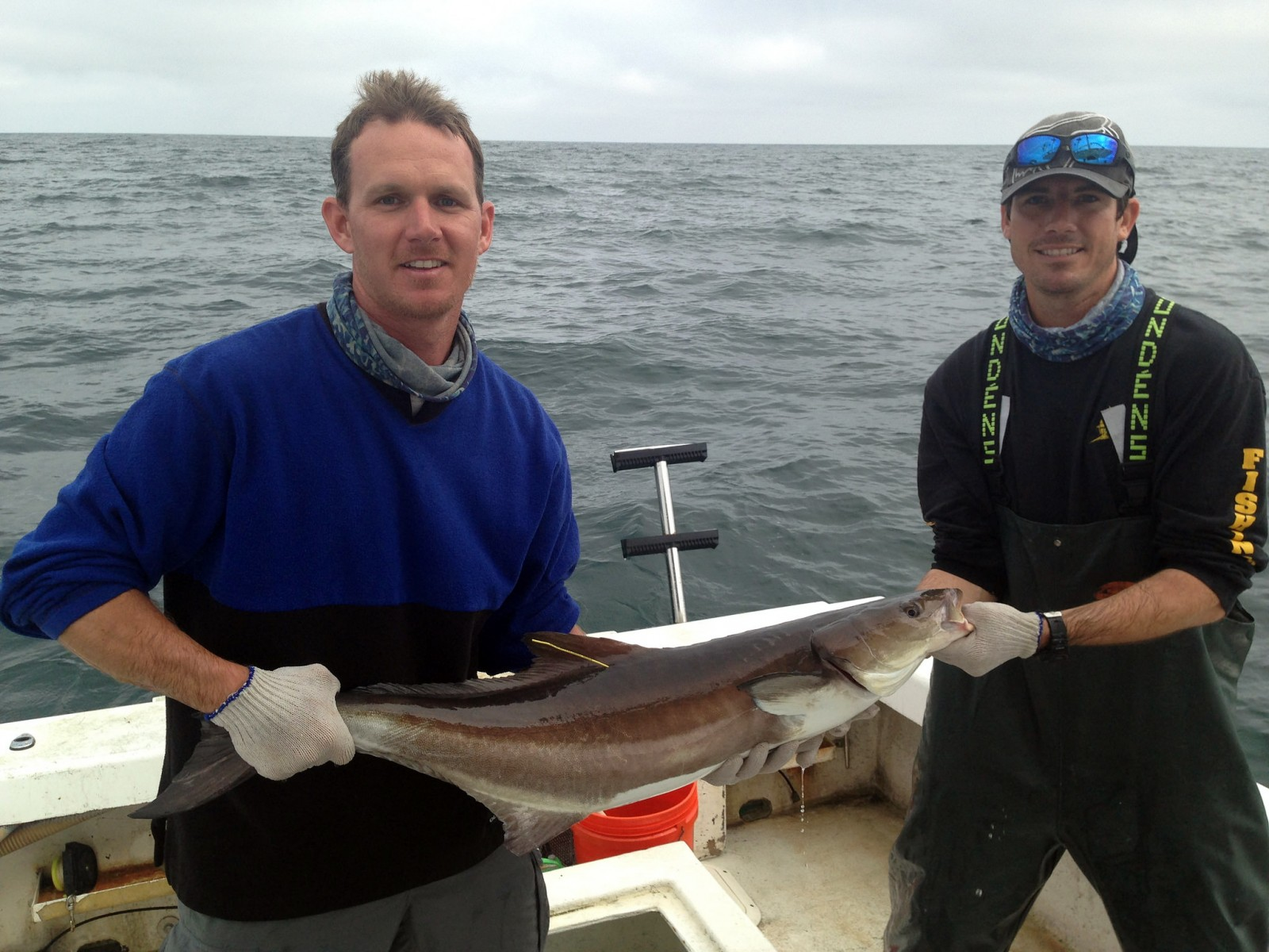 Beau Yeiser and JJ Brodbeck, biologists with our Fisheries-Independent Monitoring (FIM) Program, hold a tagged cobia caught offshore of Stuart, FL. Our fisheries staff in Tequesta are monitoring the movements of adult cobia in offshore waters using acoustic receiver technology. Tracking the movements of cobia (Rachycentron canadum) will allows researchers to determine migration patterns and the geographical location of the biological Atlantic and Gulf stock boundary.