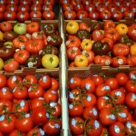 Tomatoes are a rich source of lycopene which can help lessen the likelihood of sunburn. Credit: Dean Barnes
