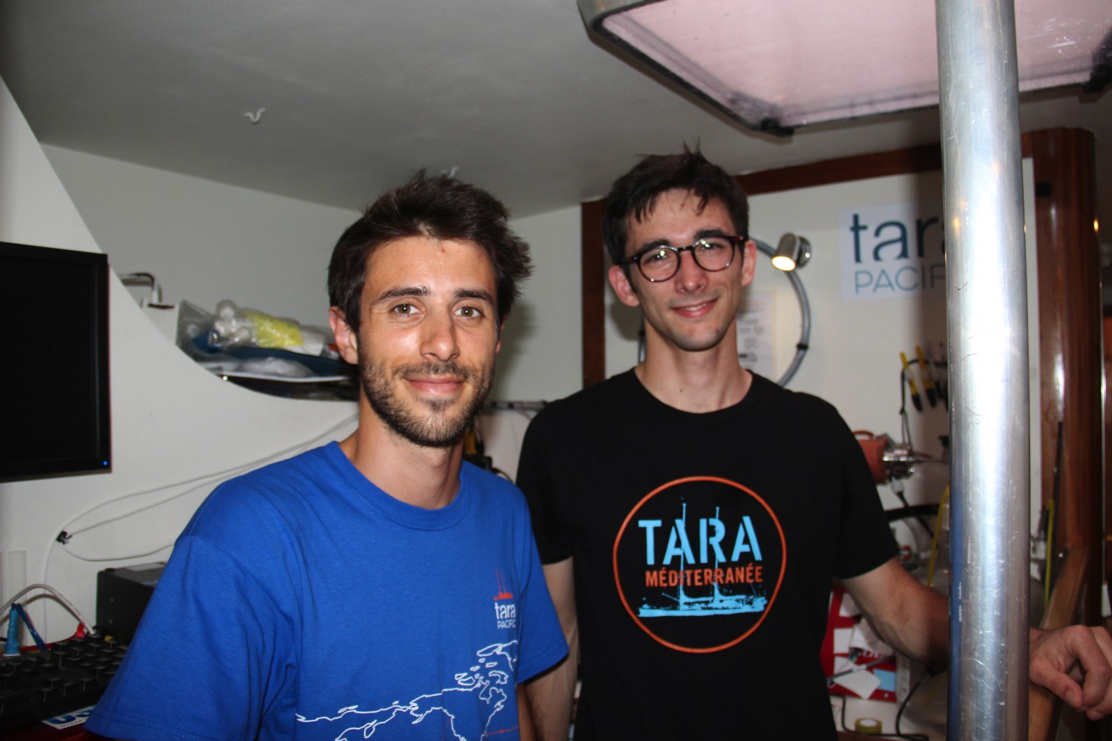 TARA  sc 1