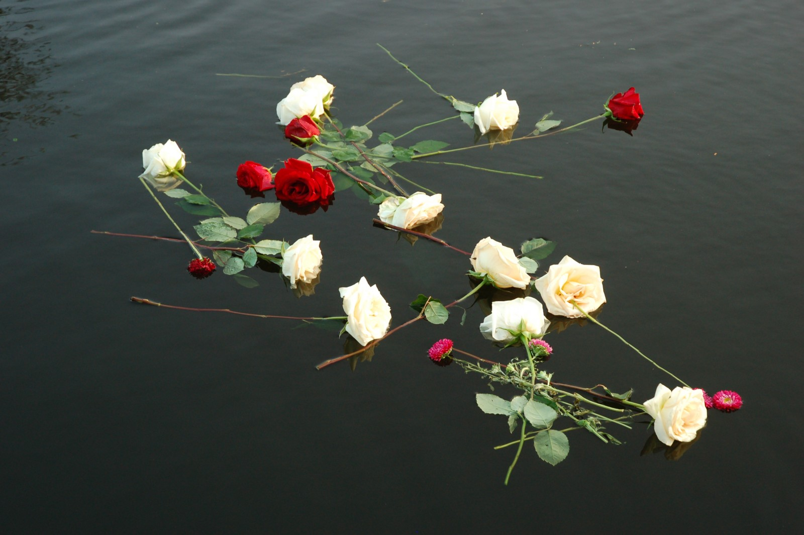 Obituaries in the yachting industry