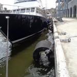 Havana Port Cruise Ship Terminal Yoko Fenders