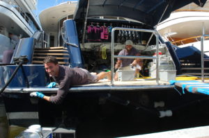 FLIBS17: Crew prep for opening day
