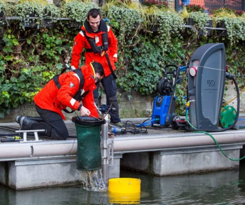 London marina installs Seabins