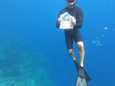 Triton Spotted in Tonga