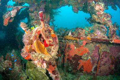 Dive deep for great shipwreck shots